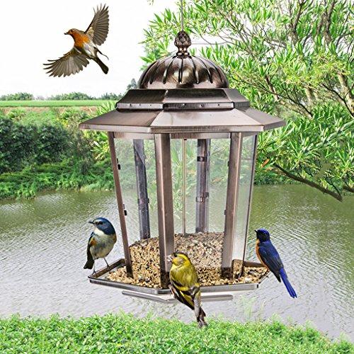 Mehr Vögel Kolibri Zubringer Hängend Gazebo Wild Vogel Zubringer Zieht An Vögel Und Draussen Vögel Beobachten. Cacoffay