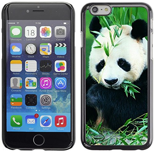 Graphic4You Ni Hao China Karikatur Panda Tier Design Harte Hülle Case Tasche Schutzhülle für Apple iPhone 6 Plus / 6S Plus Design #3