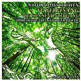 Natur für den Schlaf: tibetanisches Heilglockenspiel (Bonus Track)