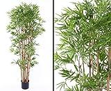 Bambus, schwer entflammbar, mit 2400 Blättern, Höhe ca. 180cm mit Topf Kunstpflanzen Kunstbäume