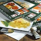 Winsor & Newton ölmalblock, 10Hojas ölpapier con Lienzo Textura, 230g/m², Papel, weiß, 30,5 x 40,6 cm Ölpapier - 10 Blat, 230g/m²