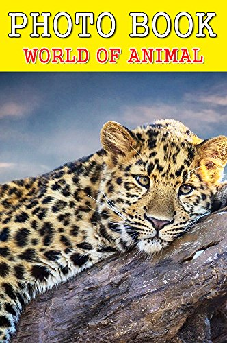 photo-book-wolrd-of-animal-vol14-photography-photo-book-english-edition