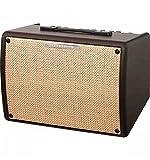Ibanez Troubadour II 30 Watts - Ampli guitare acoustique