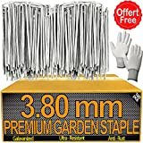 Piquet pour Bordure de Jardin X100PCS - 3.80mm