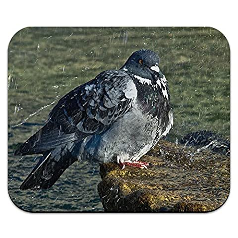 Fat Pigeon in the Rain Mouse Pad Mousepad