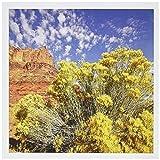3drose Utah, Red Rock near Moab, RABBITBRUSH–US45rsp0027–Rob Sheppard–Grußkarten, 15,2x 15,2cm,