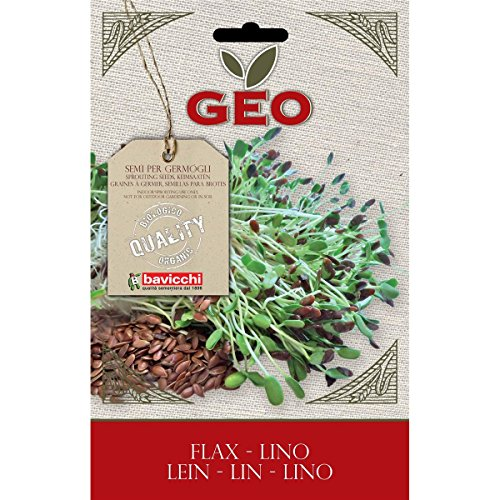 Geo Graine à Germer Lin Brun 12,7 x 0,7 x 20 cm