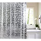 FACTCORE 3D PVC Waterproof Stone Design Shower Curtain with 8 Hooks (54 X 84-Inch, Transparent)