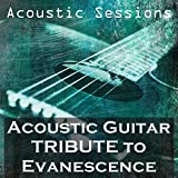 Acoustic Guitar Tribute to Evanescence