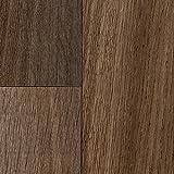 BODENMEISTER BM70510 PVC CV Vinyl Bodenbelag Auslegware Holzoptik Landhausdiele braun 200, 300 und 400 cm breit, 4,5 x 2 m