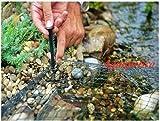 PONDPRO peces Koi estanque, Red 4M x 3m protección estanque de peces gatos hojas Heron pantalla