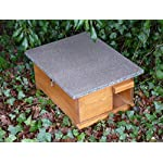 riverside woodcraft hedgehog eco house with anti bacteria coating Riverside Woodcraft Hedgehog Eco House With Anti Bacteria Coating 61 Gncd9mfL