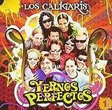 Songtexte von Los Caligaris - Yernos perfectos