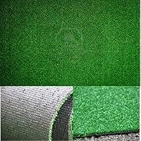 Imitación de pasto 1 X 10 MT Alfombra piel de césped artificial de hierba Felpudo sintética