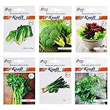 Best Lettuces - Kraft Seeds English Vegetables Seeds Combo Broccoli ,Celery Review