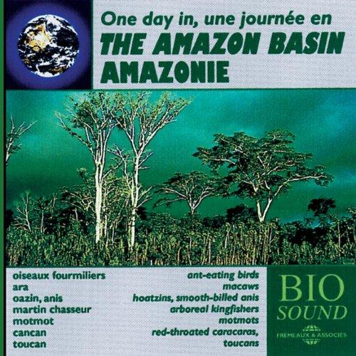 The Amazon Basin - Amazonie (Oiseaux fourmiliers, Ara, Oazin, Anis, Martin chasseru, Motmot, cancan, toucan)