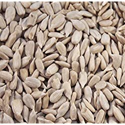 MALTBYS' STORES 1904 LTD 10KG SUNFLOWER HEARTS FOR WILD BIRDS BY THE UK'S TRUSTED BRAND SINCE 1904