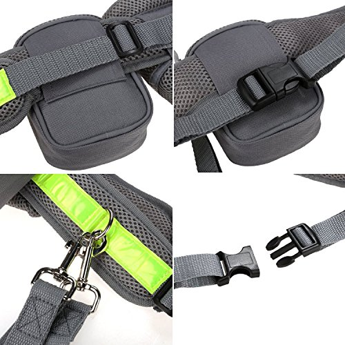 Hands Free Dog Leash, AntEuro Cane Nastro e Jogging Guinzaglio, Scomparsa con Cintura in Vita Riflettente per la Corsa, Jogging, Passeggiate, Trekking, Mountain Bike (Grigio) Grigio