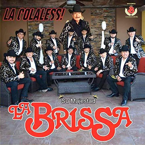La Colaless (La Brissa)