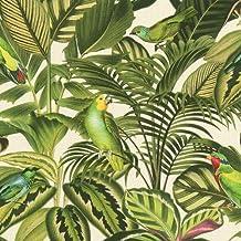 Amazonfr Papier Peint Jungle