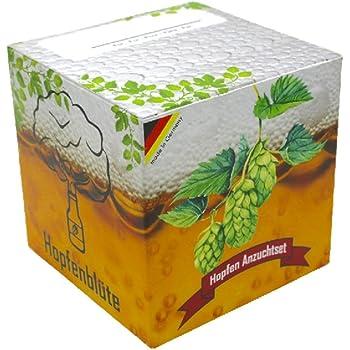 HOPFENBLÜTE Geschenk-Anzuchtset - Männergeschenk Bier-Liebhaber - Hopfen Samen Anzuchtset - Witziges Geburtstags-Geschenk - Vatertag-Geschenk