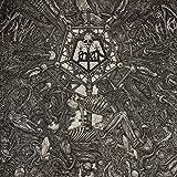 Lantern: II: Morphosis (Vinyl) [Vinyl LP] (Vinyl)