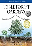 Edible Forest Gardens: Vision and Theory v. 1: Ecological Vision, Theory for Temperate Climate Permaculture: Ecological Vision and Theory for Temperate-climate Permaculture