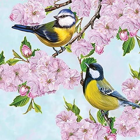 20serviettes Napkins 33x 33cm Table packg. serviettage Mésange Fer Fleurs tits on Cherry Blossom Twig