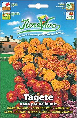 Hortus 60SDFT014 Fiorevivo Tagete Patula, Nana, Mix, 13x0.2x20 cm