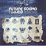Future Sound of Egypt Vol.3