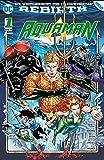Aquaman: Bd. 1 (2. Serie): Der Untergang