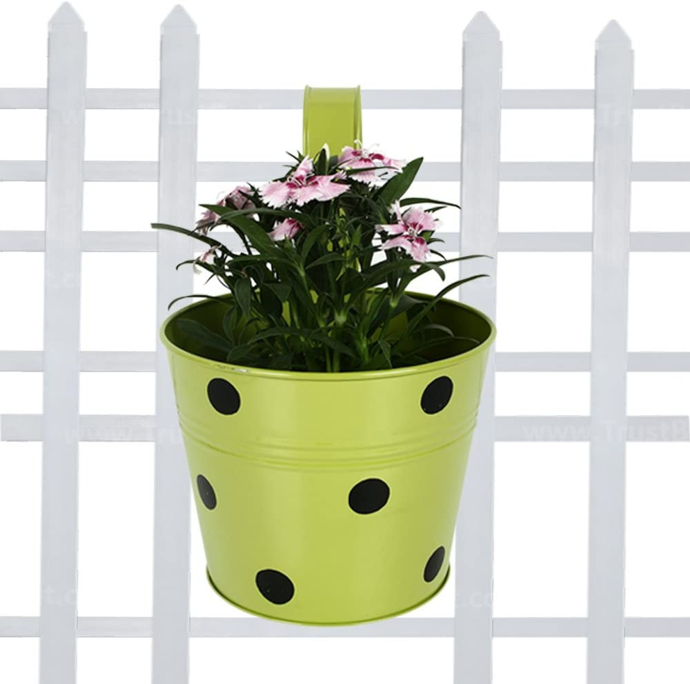 254 & Flower Pots: Buy Flower Pots Online at Best Prices in India ...