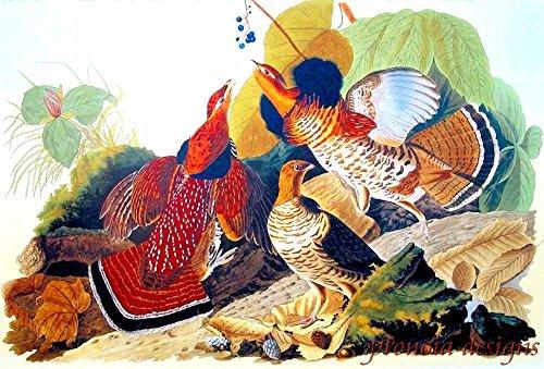 Grouse Bird (Counted Cross Stitch Pattern: