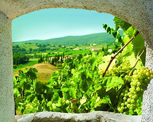Décoration adhésive Toscane Trompe l'Œil Fenêtre, Polyester, Multicolore, 75 x 0,1 x 60 cm