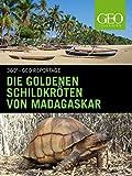 Die goldenen Schildkröten von Madagaskar