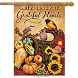 Carson Large Flag - Songbird Cornuopia - Best Reviews Guide