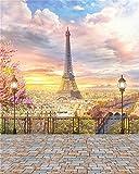 YongFoto 2,5x3m Vinyl Foto Hintergrund Paris Eiffelturm Stadtlandschaft Straßenlampen Metall Zaun Vintage Etage Romantisch Fotografie Hintergrund für Hochzeit Fotoshooting Portraitfotos Fotostudio Requisiten