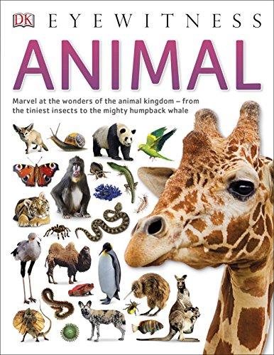 Animal (Eyewitness) por Vv.Aa