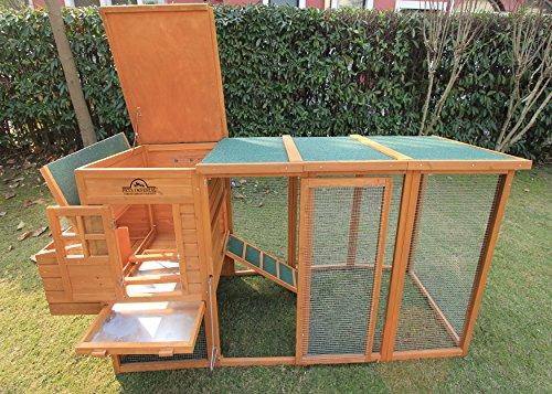 Pets Imperial® Arlington Hühnerstll mit extra langen Auslaufflächen 8ft/2,5m und Asphaltabdeckung geeignet für 4/6 Vögel je nach Größe - 3