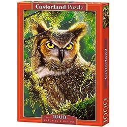 Castorland - C-103577-2 - Puzzle - Regarder et Attendre Hibou - 1000 Pièces