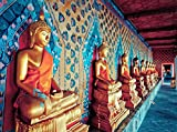 VLIES Fototapete GOLDENE BUDDHAS-(346vp)-350x260 cm in 7 BAHNEN 50 cm B.x260 cm H. -Digitaldruck! Spezialkleber für Vliestapete!- Non Woven Wall XXL Phototapete Foto Mural Photo Bildtapete Fotomural City Insel Meer Pferd Skyline Steine Strand Wald