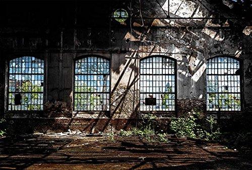 Scenolia Papel Pintado Póster panorámica Déco Industrial 4x 2,70M   Déco y Fotos de Pared XXL Calidad HD