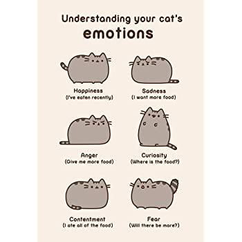 Pusheen The Cat Understanding Your Cats Emotions Greeting Card