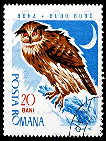 POSTAGE STAMP ROMANIA 20 BANI EAGLE OWL ILLUSTRATION POSTMARKED MOON ART POSTER AFFICHE PRINT BMP11083