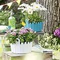 Emsa 513480 Landhaus Piepmatz Blumenstecker, gelb von Emsa bei Du und dein Garten