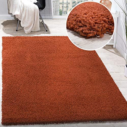 Paco Home Hochflor Shaggy Langflor Teppich versch. Farben u. Grössen TOP Preis NEU*OVP, Grösse:40x60 cm, Farbe:Terrakotta - Schwarzer Flokati-teppich