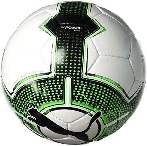 Puma Fußball EvoPower 5.3 Futsal, White-Green Gecko Black, 4, 082567 31