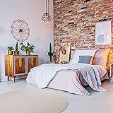 havatex Schurwolle Teppich Shepherd rund - Farbe wählbar | 100% strapazierfähige Naturfaser Wolle | für Wohnzimmer Schlafzimmer Esszimmer Büros, Farbe:Beige, Größe:180 cm rund