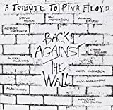 Back Against the Wall by PINK FLOYD TRIBUTE (2013-05-03)