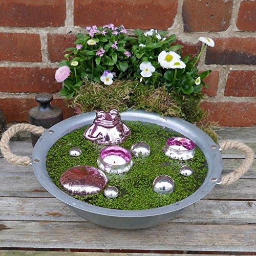 Gartenzaubereien Miniteich Frosch Rosa, Glass